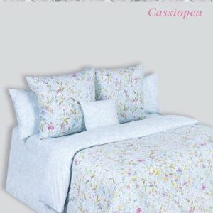alt = Cassiopea